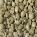 Washed Arabica Coffee S18 Clean